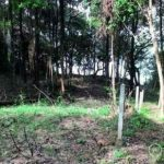 Ocean View Land for Sale on Yao Noi Island (Phuket) for sale